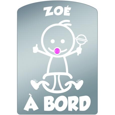 Plaque de voiture transparente ZOE