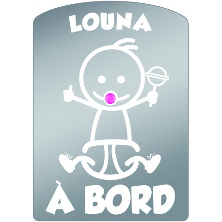 Plaque de voiture transparente LOUNA