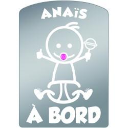 Plaque de voiture transparente ANAIS
