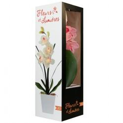 Lampe LED orchidée rose dans grand pot